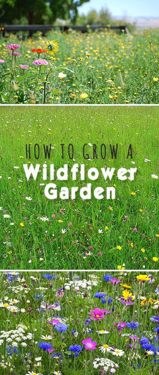 DIY Spring Gardening Projects - Grow A Wildflower Garden - Cool and Easy Planting Tips for Spring Garden - Step by Step Tutorials for Growing Seeds, Plants, Vegetables and Flowers in You Yard - DIY Project Ideas for Women and Men - Creative and Quick Backyard Ideas For Summer