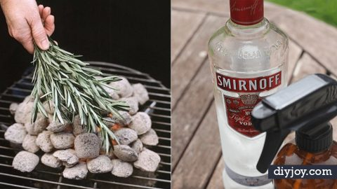 27 Ways to Banish Bugs From Next Barbecue | DIY Joy Projects and Crafts Ideas