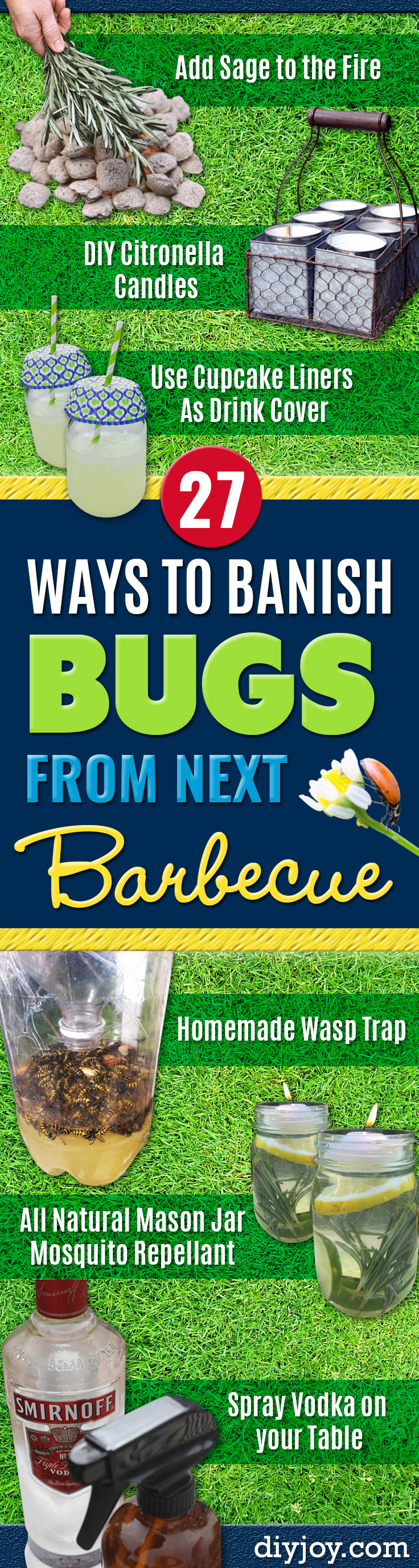 Best Ways to Get Rid of Bugs - Easy Tips and Tricks to Get Rid of Roaches, Ants, Fleas and Flies - DIY Ways To Exterminate and Elimiate Pests from Your Home and Yard, Picnics and Outdoor Barbecue http://diyjoy.com/ways-to-get-rid-of-bugs