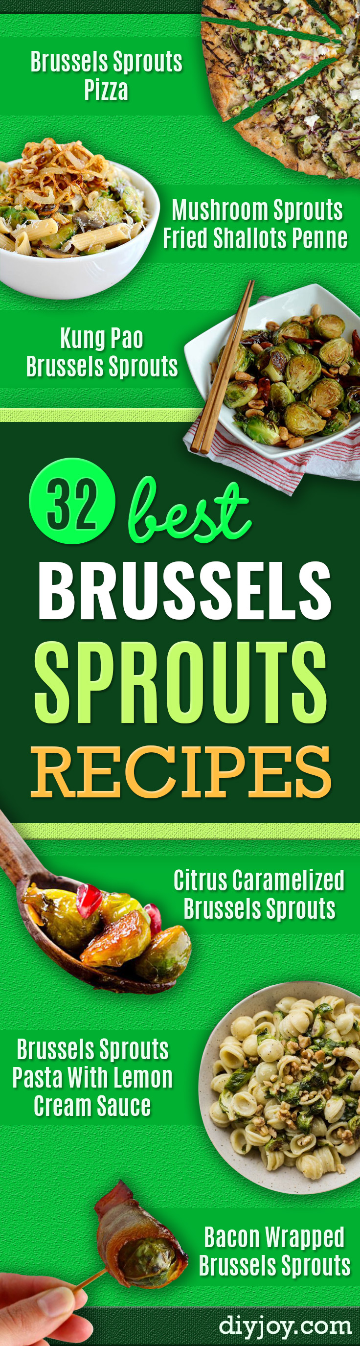 brussel sprout recipes - easy brussel sprouts idea and Quick Delicious Ideas for Making Brussel Sprouts With Bacon, Roasted, Creamy, Healthy, Baked, Sauteed, Crockpot, Grilled, Shredded and Salad Recipe Ideas - Cool Lunches, Dinner, Snack, Side and DIY Dinner Vegetable Dishes