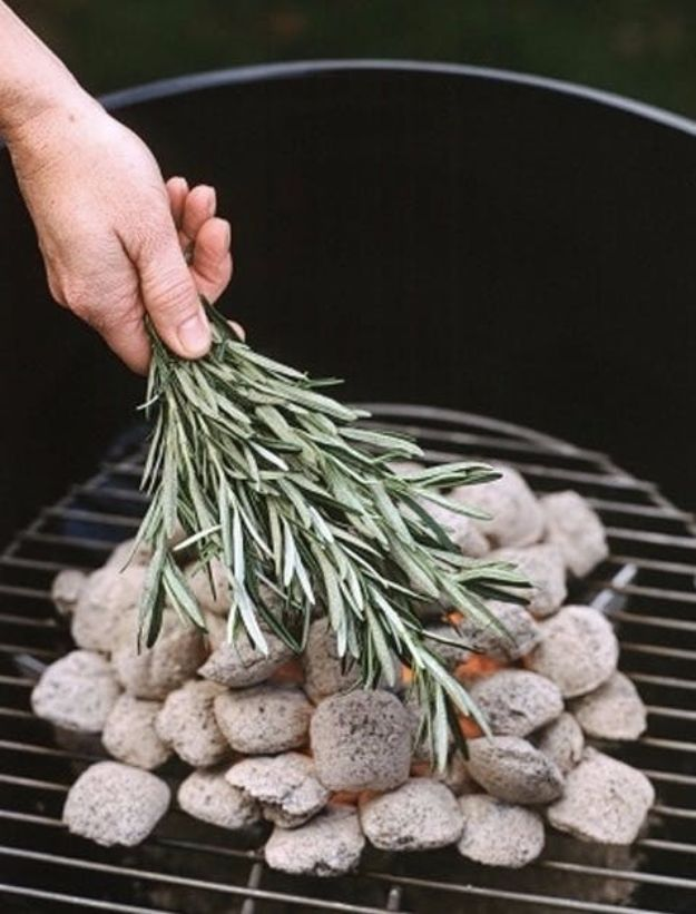 Best Ways to Get Rid of Bugs - Add Sage To The Fire - Easy Tips and Tricks to Get Rid of Roaches, Ants, Fleas and Flies - DIY Ways To Exterminate and Elimiate Pests from Your Home and Yard, Picnics and Outdoor Barbecue http://diyjoy.com/ways-to-get-rid-of-bugs