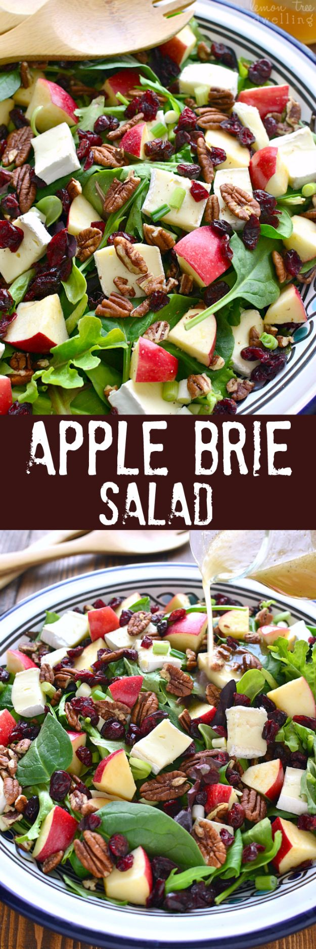 Best Dinner Salad Recipes - Apple Brie Salad - Easy Salads to Make for Quick and Healthy Dinners - Healthy Chicken, Egg, Vegetarian, Steak and Shrimp Salad Ideas - Summer Side Dishes, Hearty Filling Meals, and Low Carb Options #saladrecipes #dinnerideas #salads #healthyrecipes