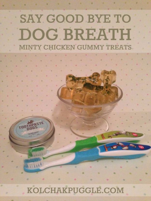 DIY Dog Grooming Tutorials - Dog Teeth Care How to Take Care of Your Dogs Teeth At Home- Cool and Easy Ways to Wash, Groom and Style Your Pets Fur - Trim Toenails, Brush Teeth, Bath, Trim and Clip Dogs Fur - Hair - Remove Fleas and Anti Itch - Save Money At The Groomer By Learning How To Do These Things At Home #diy #pets #dog