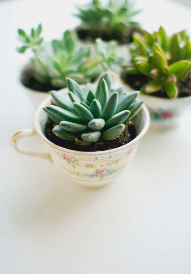 DIY Mothers Day Gift Ideas - Easy DIY Tea Cup Planter - Homemade Gifts for Moms - Crafts and Do It Yourself Home Decor, Accessories and Fashion To Make For Mom - Mothers Love Handmade Presents on Mother's Day - DIY Projects and Crafts by DIY JOY http://diyjoy.com/diy-mothers-day-gifts