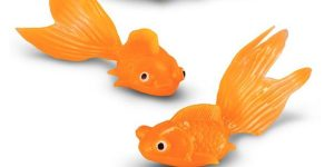 Clever Gal Takes A Plastic Goldfish And Watch What She Does With It. Amazing!