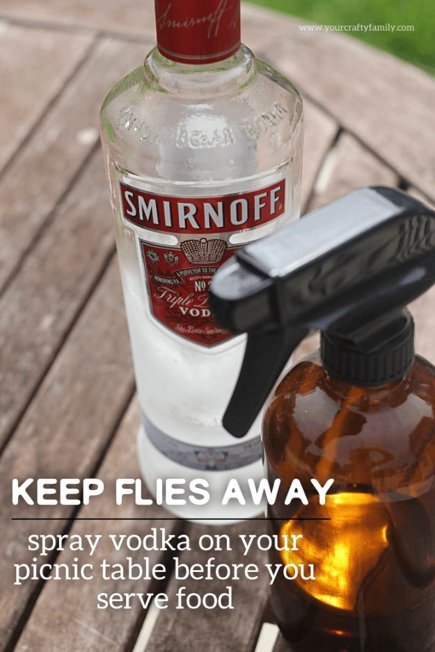 Best Ways to Get Rid of Bugs - Keep Flies Away From Food - Easy Tips and Tricks to Get Rid of Roaches, Ants, Fleas and Flies - DIY Ways To Exterminate and Elimiate Pests from Your Home and Yard, Picnics and Outdoor Barbecue http://diyjoy.com/ways-to-get-rid-of-bugs