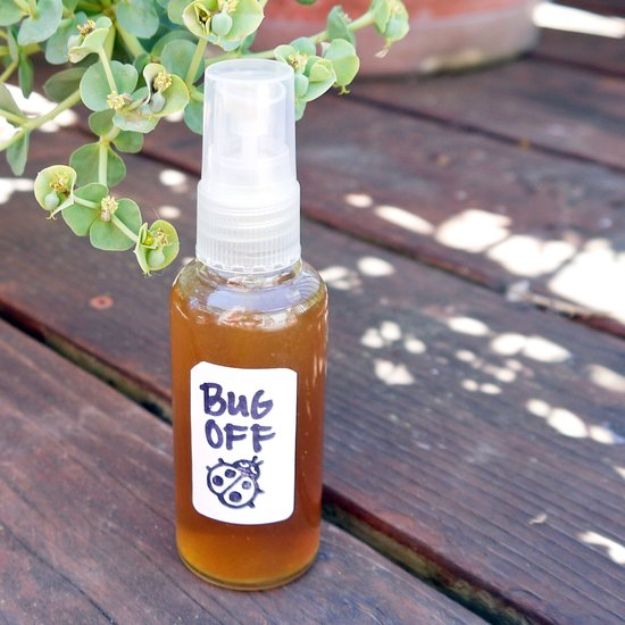 Best Ways to Get Rid of Bugs - Make Your Own Bug Spray - Easy Tips and Tricks to Get Rid of Roaches, Ants, Fleas and Flies - DIY Ways To Exterminate and Elimiate Pests from Your Home and Yard, Picnics and Outdoor Barbecue http://diyjoy.com/ways-to-get-rid-of-bugs