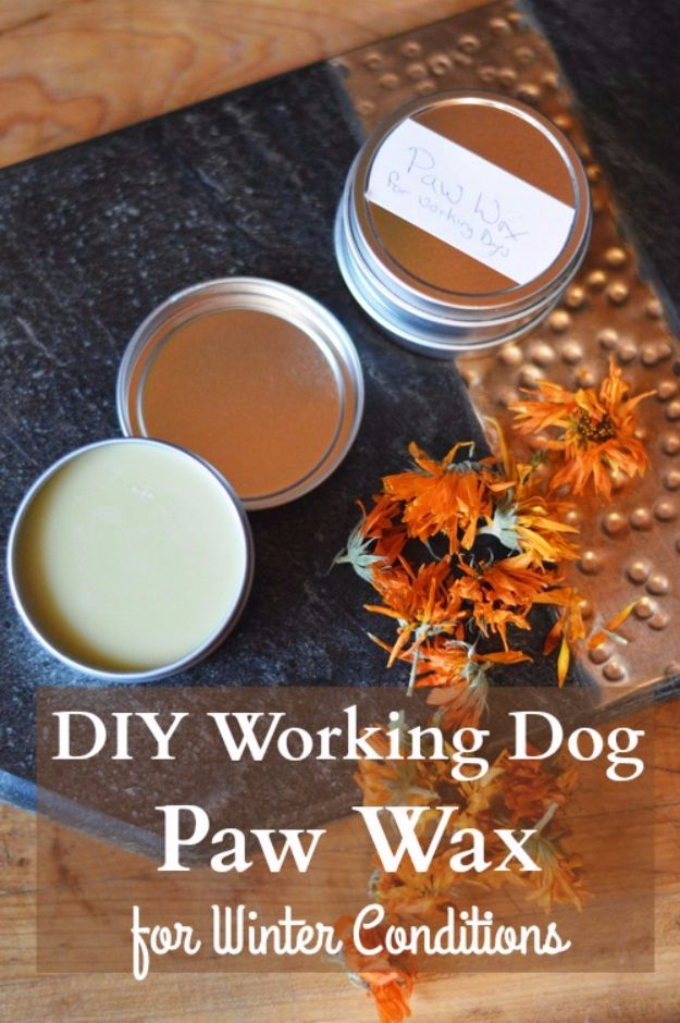 DIY Dog Grooming Tutorials - Paw Wax For Working Dogs - Cool and Easy Ways to Wash, Groom and Style Your Pets Fur - Trim Toenails, Brush Teeth, Bath, Trim and Clip Dogs Fur - Hair - Remove Fleas and Anti Itch - Save Money At The Groomer By Learning How To Do These Things At Home #diy #pets #dog