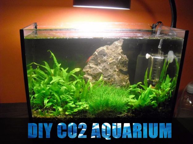 DIY Aquarium Ideas - DIY CO2 Aquarium - Cool and Easy Decorations for Tank Aquariums, Mason Jar, Wall and Stand Projects for Fish - Creative Background Ideas - Fun Tutorials for Kids to Make With Plants and Decor - Best Home Decor and Crafts by DIY JOY