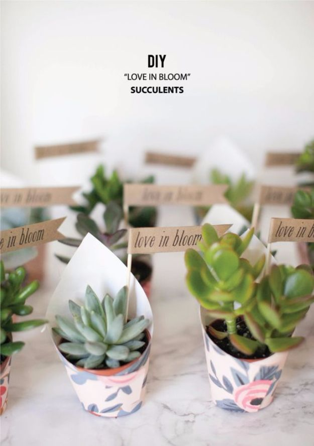 DIY Wedding Favors - DIY Love In Bloom Succulent Favors - Do It Yourself Ideas for Brides and Best Wedding Favor Ideas for Weddings - cheap wedding favor ideas #wedding #diy