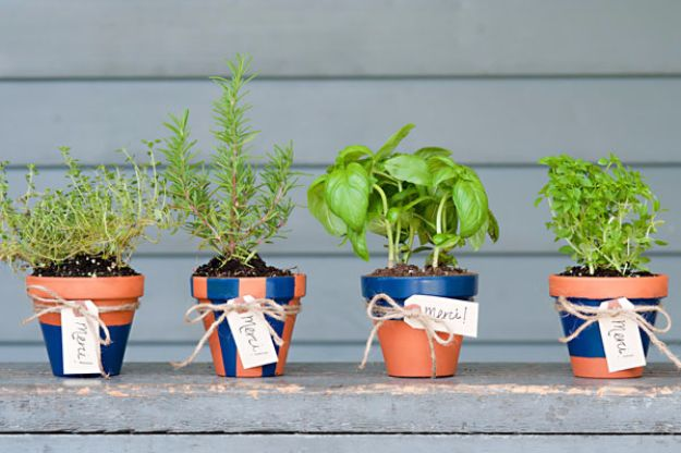 DIY Wedding Favors - DIY Potted Herb Favors - Do It Yourself Ideas for Brides and Best Wedding Favor Ideas for Weddings - cheap wedding favor ideas #wedding #diy