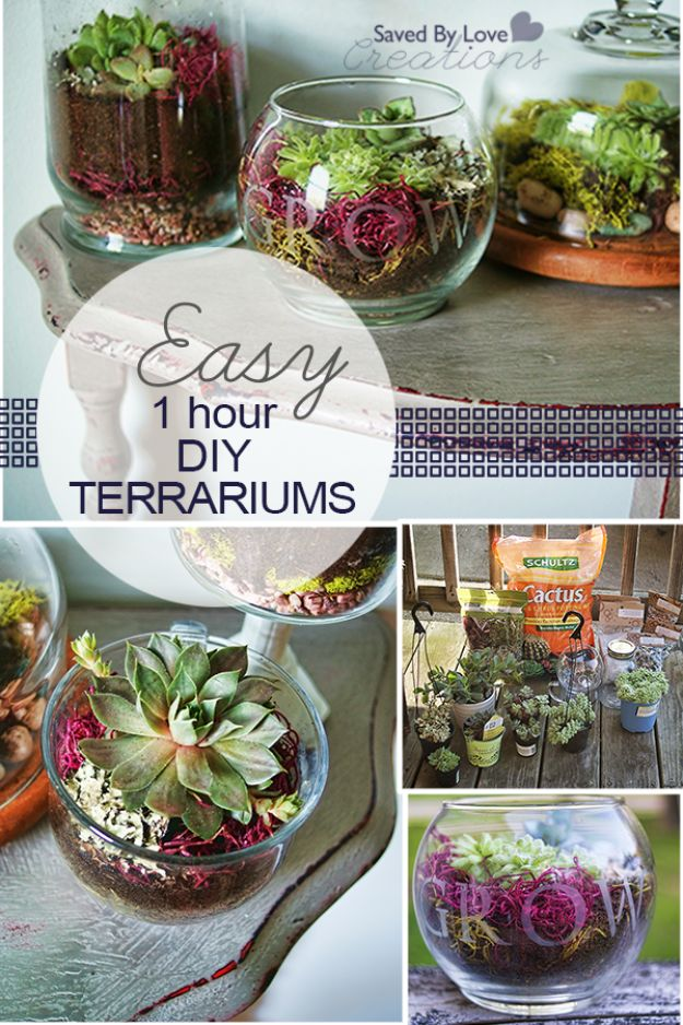 DIY Terrarium Ideas - Easy 1 Hour DIY Terrarium - Cool Terrariums and Crafts With Mason Jars, Succulents, Wood, Geometric Designs and Reptile, Acquarium - Easy DIY Terrariums for Adults and Kids To Make at Home http://diyjoy.com/diy-terrarium-ideas