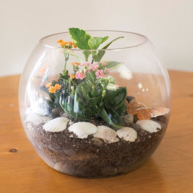 DIY Terrarium Ideas - Fish Bowl Terrarium - Cool Terrariums and Crafts With Mason Jars, Succulents, Wood, Geometric Designs and Reptile, Acquarium - Easy DIY Terrariums for Adults and Kids To Make at Home http://diyjoy.com/diy-terrarium-ideas