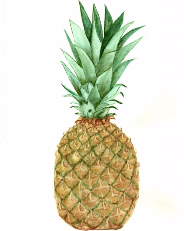 Best Free Printables For Your Walls - Free Pineapple Watercolor Printable - Free Prints for Wall Art and Picture to Print for Home and Bedroom Decor - Crafts to Make and Sell With Ideas for the Home, Organization #diy