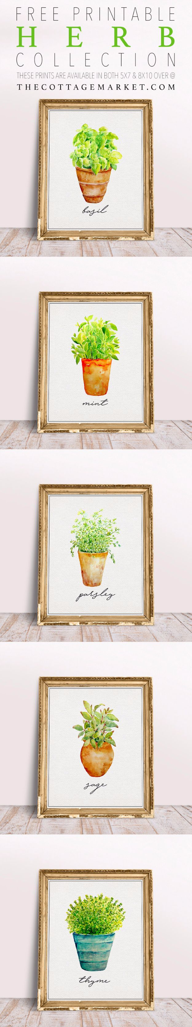 35 best free printables for your walls diy joy free printables for your walls free printable herb collection best free prints for wall jeuxipadfo Gallery