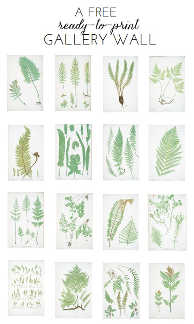 Best Free Printables For Your Walls - Free Ready To Print Gallery Wall - Free Prints for Wall Art and Picture to Print for Home and Bedroom Decor - Crafts to Make and Sell With Ideas for the Home, Organization #diy
