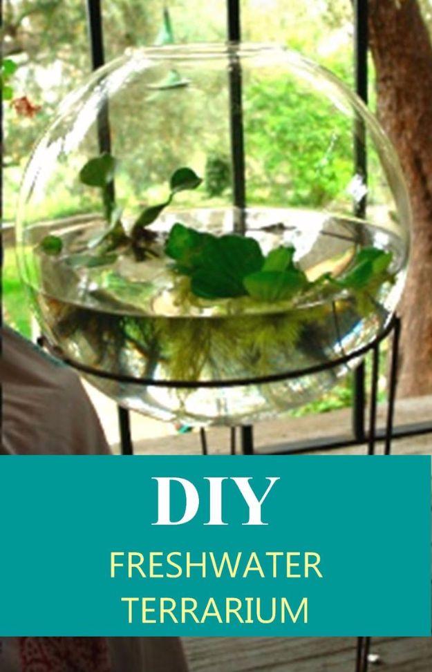 DIY Terrarium Ideas - Freshwater Terrarium - Cool Terrariums and Crafts With Mason Jars, Succulents, Wood, Geometric Designs and Reptile, Acquarium - Easy DIY Terrariums for Adults and Kids To Make at Home http://diyjoy.com/diy-terrarium-ideas