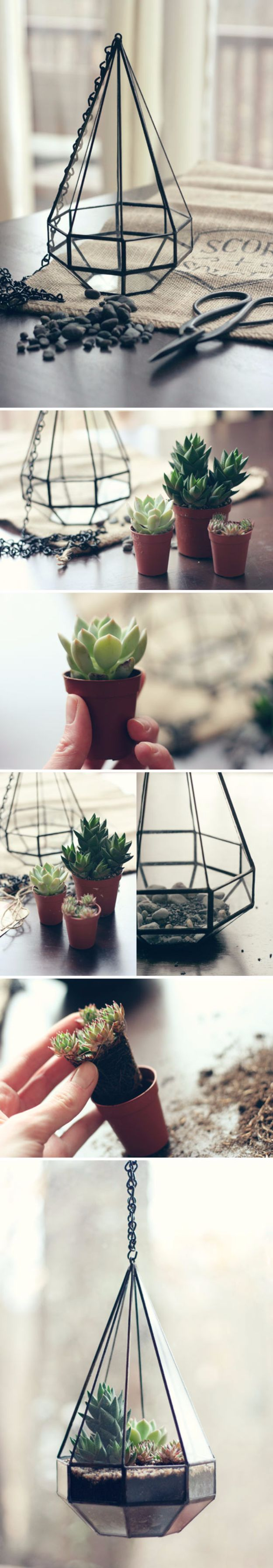 DIY Terrarium Ideas - Hanging Glass Terrarium - Cool Terrariums and Crafts With Mason Jars, Succulents, Wood, Geometric Designs and Reptile, Acquarium - Easy DIY Terrariums for Adults and Kids To Make at Home