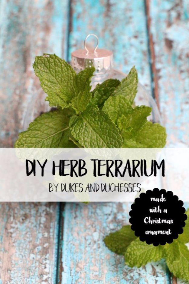 DIY Terrarium Ideas - Herb Terrarium - Cool Terrariums and Crafts With Mason Jars, Succulents, Wood, Geometric Designs and Reptile, Acquarium - Easy DIY Terrariums for Adults and Kids To Make at Home http://diyjoy.com/diy-terrarium-ideas