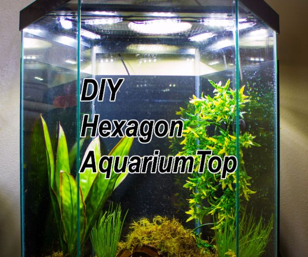 DIY Aquarium Ideas - Hexagon Aquarium Top - Cool and Easy Decorations for Tank Aquariums, Mason Jar, Wall and Stand Projects for Fish - Creative Background Ideas - Fun Tutorials for Kids to Make With Plants and Decor - Best Home Decor and Crafts by DIY JOY