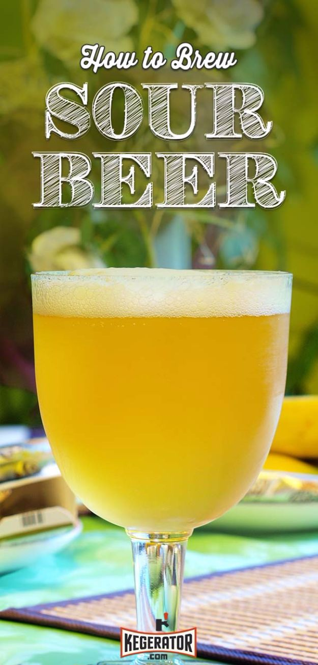 Best Homemade Beer Recipes - Homemade Sour Beer - Easy Homebrew Drinks and Brewing Tutorials for Craft Beers Made at Home - IPA, Summer, Red, Lager and Ales - Instructions and Step by Step Tutorials for Making Beer at Home http://diyjoy.com/homemade-beer-recipes