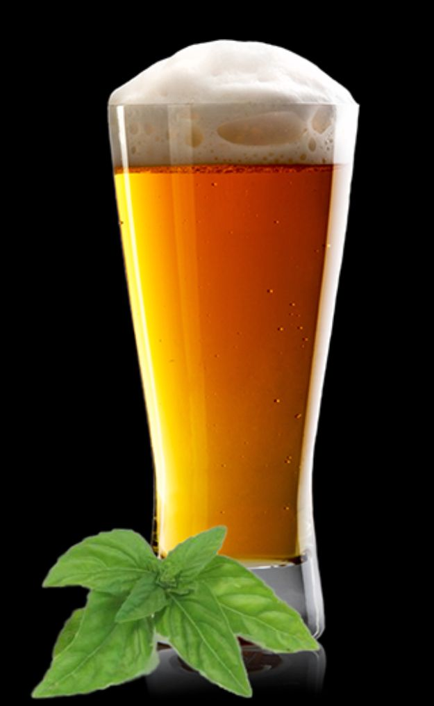 Best Homemade Beer Recipes - Honey Basil Saison - Easy Homebrew Drinks and Brewing Tutorials for Craft Beers Made at Home - IPA, Summer, Red, Lager and Ales - Instructions and Step by Step Tutorials for Making Beer at Home http://diyjoy.com/homemade-beer-recipes