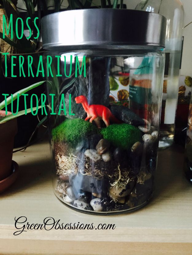 DIY Terrarium Ideas - Moss Terrarium - Cool Terrariums and Crafts With Mason Jars, Succulents, Wood, Geometric Designs and Reptile, Acquarium - Easy DIY Terrariums for Adults and Kids To Make at Home http://diyjoy.com/diy-terrarium-ideas