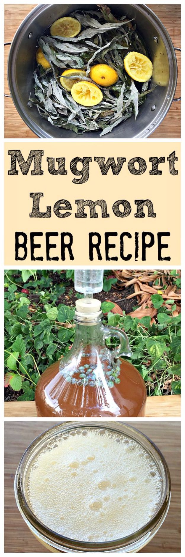 Best Homemade Beer Recipes - Mugwort Lemon Beer - Easy Homebrew Drinks and Brewing Tutorials for Craft Beers Made at Home - IPA, Summer, Red, Lager and Ales - Instructions and Step by Step Tutorials for Making Beer at Home http://diyjoy.com/homemade-beer-recipes