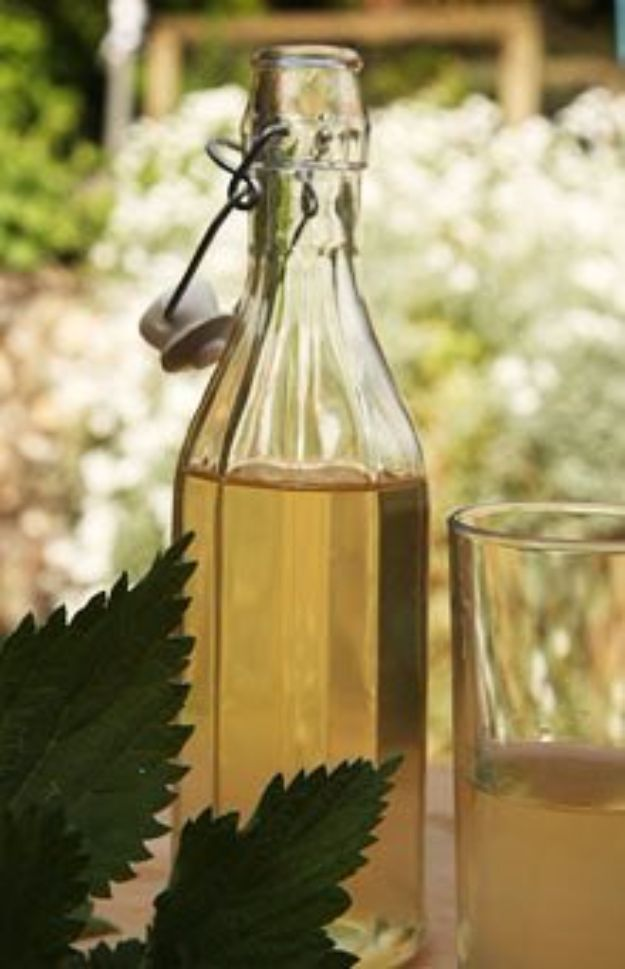 Best Homemade Beer Recipes - Nettle Beer - Easy Homebrew Drinks and Brewing Tutorials for Craft Beers Made at Home - IPA, Summer, Red, Lager and Ales - Instructions and Step by Step Tutorials for Making Beer at Home http://diyjoy.com/homemade-beer-recipes