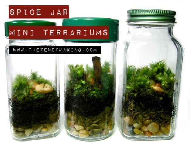 DIY Terrarium Ideas - Spice Jar Terrarium - Cool Terrariums and Crafts With Mason Jars, Succulents, Wood, Geometric Designs and Reptile, Acquarium - Easy DIY Terrariums for Adults and Kids To Make at Home http://diyjoy.com/diy-terrarium-ideas