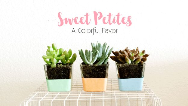 DIY Wedding Favors - Succulent Wedding Favor - Do It Yourself Ideas for Brides and Best Wedding Favor Ideas for Weddings - cheap wedding favor ideas #wedding #diy