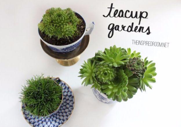DIY Terrarium Ideas - Teacup Terrarium - Cool Terrariums and Crafts With Mason Jars, Succulents, Wood, Geometric Designs and Reptile, Acquarium - Easy DIY Terrariums for Adults and Kids To Make at Home http://diyjoy.com/diy-terrarium-ideas