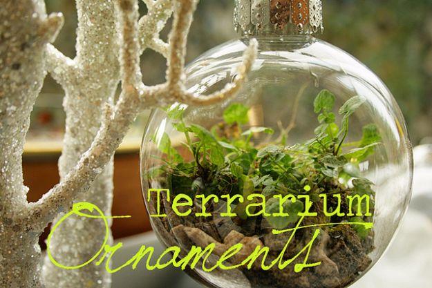 DIY Terrarium Ideas - Terrarium Ornaments - Cool Terrariums and Crafts With Mason Jars, Succulents, Wood, Geometric Designs and Reptile, Acquarium - Easy DIY Terrariums for Adults and Kids To Make at Home http://diyjoy.com/diy-terrarium-ideas