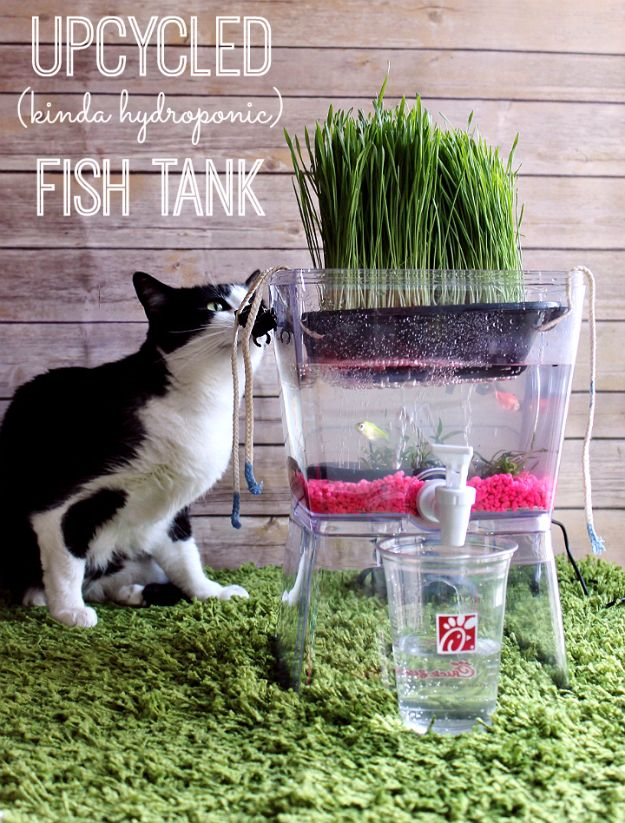 DIY Aquarium Ideas - Upcycled Fish Tank - Cool and Easy Decorations for Tank Aquariums, Mason Jar, Wall and Stand Projects for Fish - Creative Background Ideas - Fun Tutorials for Kids to Make With Plants and Decor - Best Home Decor and Crafts by DIY JOY