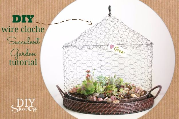 DIY Terrarium Ideas - Wire Cloche Terrarium - Cool Terrariums and Crafts With Mason Jars, Succulents, Wood, Geometric Designs and Reptile, Acquarium - Easy DIY Terrariums for Adults and Kids To Make at Home
