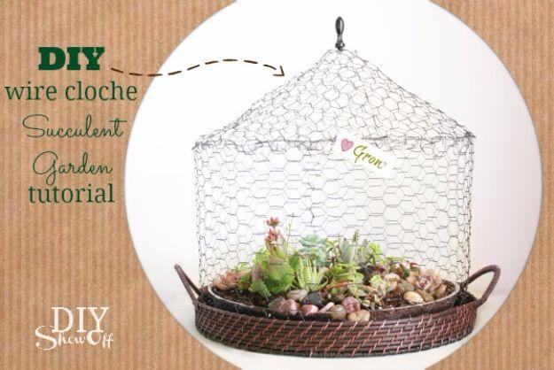 DIY Terrarium Ideas - Wire Cloche Terrarium - Cool Terrariums and Crafts With Mason Jars, Succulents, Wood, Geometric Designs and Reptile, Acquarium - Easy DIY Terrariums for Adults and Kids To Make at Home http://diyjoy.com/diy-terrarium-ideas