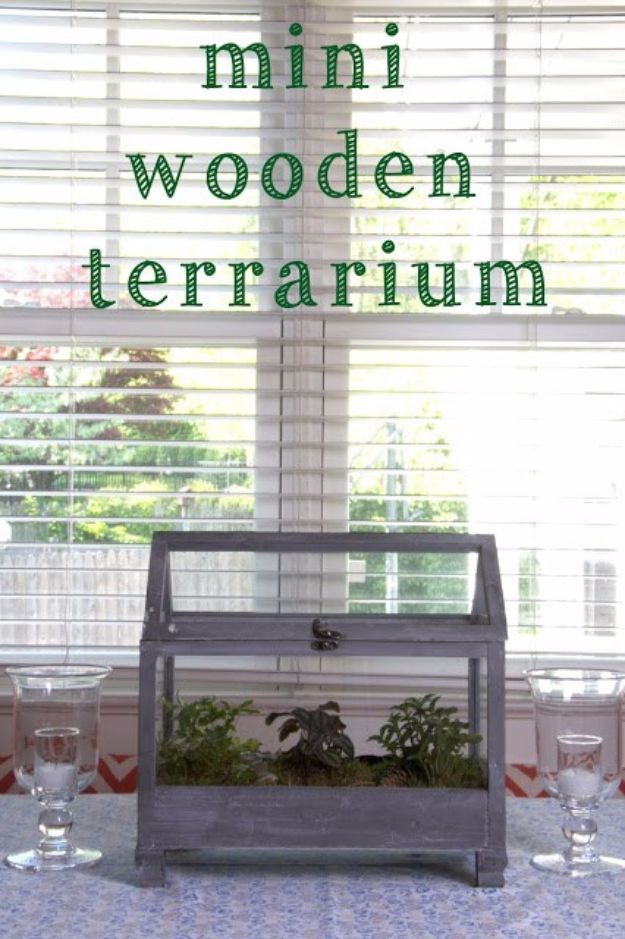 DIY Terrarium Ideas - Wooden Terrarium - Cool Terrariums and Crafts With Mason Jars, Succulents, Wood, Geometric Designs and Reptile, Acquarium - Easy DIY Terrariums for Adults and Kids To Make at Home http://diyjoy.com/diy-terrarium-ideas