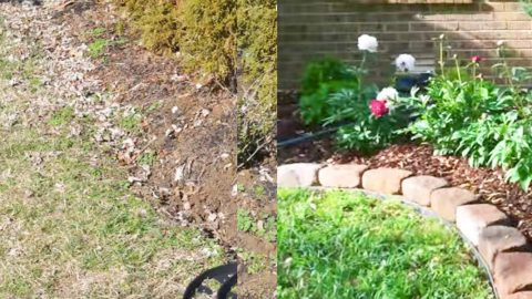 Watch How He Puts In This Easy No Dig Border To Landscape His Yard! (Before And After)   DIY Joy Projects and Crafts Ideas