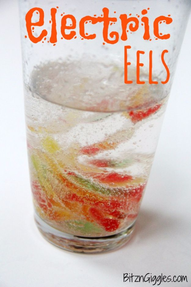 DIY Stem and Science Ideas for Kids and Teens - Electric Eels - Fun and Easy Do It Yourself Projects and Crafts Using Math, Electronics, Engineering Concepts and Basic Building Skills - Creatve and Cool Project Tutorials For Kids To Make At Home This Summer - Boys, Girls and Teenagers Have Fun Making Room Decor, Experiments and Playtime STEM Fun #stem #diyideas #stemideas #kidscrafts