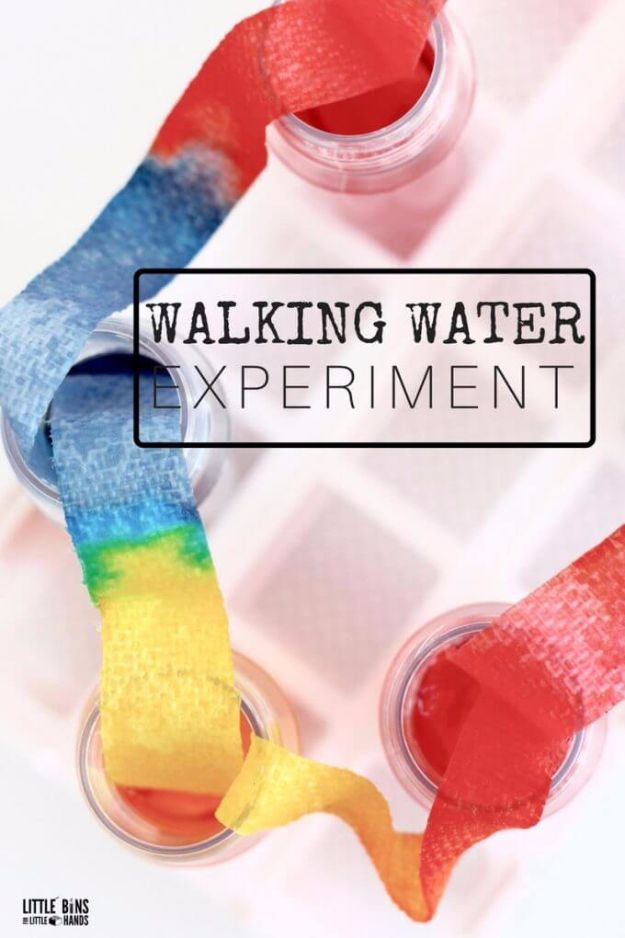 DIY Stem and Science Ideas for Kids and Teens - Walking Water Experiment - Fun and Easy Do It Yourself Projects and Crafts Using Math, Electronics, Engineering Concepts and Basic Building Skills - Creatve and Cool Project Tutorials For Kids To Make At Home This Summer - Boys, Girls and Teenagers Have Fun Making Room Decor, Experiments and Playtime STEM Fun #stem #diyideas #stemideas #kidscrafts