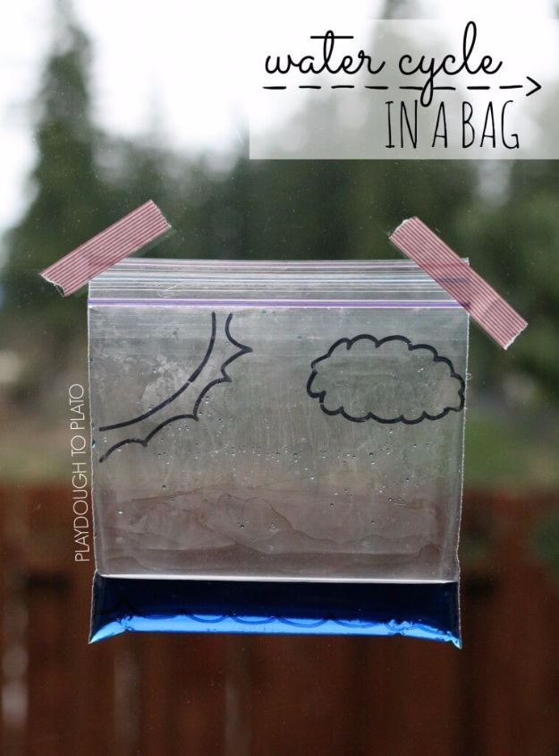 DIY Stem and Science Ideas for Kids and Teens - Water Cycle In A Bag - Fun and Easy Do It Yourself Projects and Crafts Using Math, Electronics, Engineering Concepts and Basic Building Skills - Creatve and Cool Project Tutorials For Kids To Make At Home This Summer - Boys, Girls and Teenagers Have Fun Making Room Decor, Experiments and Playtime STEM Fun #stem #diyideas #stemideas #kidscrafts