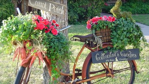 Turns Out The Best Gardens Start With What Might Seem Like Junk To Some | DIY Joy Projects and Crafts Ideas