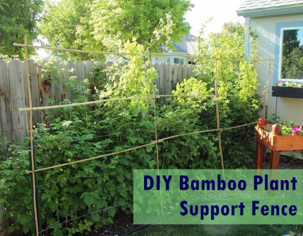DIY Ideas With Old Fence Posts - Bamboo Plant Support Fence - Rustic Farmhouse Decor Tutorials and Projects Made With An Old Fence Post - Easy Vintage Shelving, Wall Art, Picture Frames and Home Decor for Kitchen, Living Room and Bathroom - Creative Country Crafts, Seating, Furniture, Patio Decor and Rustic Wall Art and Accessories to Make and Sell