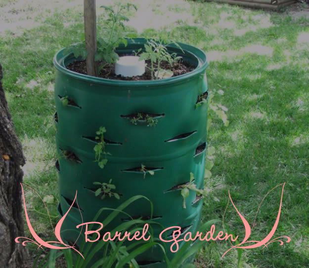 IY Ideas With Old Barrels - Barrel Garden - Rustic Farmhouse Decor Tutorials and Projects Made With a Barrel - Easy Vintage Home Decor for Kitchen, Living Room and Bathroom - Creative Country Crafts, Dog Beds, Seating, Furniture, Patio Decor and Rustic Wall Art and Accessories to Make and Sell tp://diyjoy.com/diy-projects-old-barrels