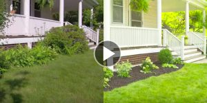 They Pull Up All Of Her Existing Plants. Watch What They Do Next — Great Tips!