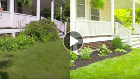 They Pull Up All Of Her Existing Plants. Watch What They Do Next — Great Tips! | DIY Joy Projects and Crafts Ideas