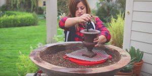 She Sets Up A Fountain In A Big Planter And What She Does Next Is Fabulous (Watch!)