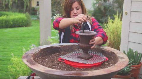 She Sets Up A Fountain In A Big Planter And What She Does Next Is Fabulous (Watch!) | DIY Joy Projects and Crafts Ideas