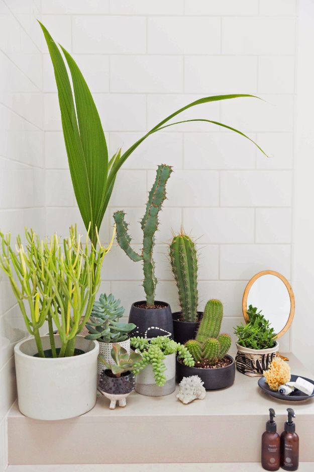 DIY Hacks for Renters - Create Indoor Garden - Easy Ways to Decorate and Fix Things on Rental Property - Decorate Walls, Cheap Ideas for Making an Apartment, Small Space or Tiny Closet Work For You - Quick Hacks and DIY Projects on A Budget - Step by Step Tutorials and Instructions for Simple Home Decor http://diyjoy.com/diy-hacks-renters