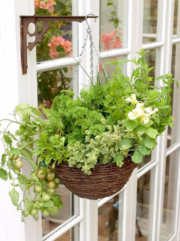 DIY Porch and Patio Ideas - Hanging Herb and Vegetable Basket - Decor Projects and Furniture Tutorials You Can Build for the Outdoors - Lights and Lighting, Mason Jar Crafts, Rocking Chairs, Wreaths, Swings, Bench, Cushions, Chairs, Daybeds and Pallet Signs
